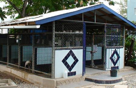 Noah's Ark Veterinary Centre